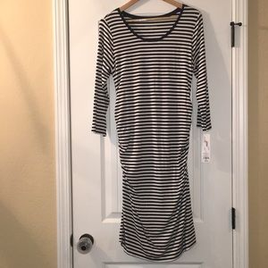 *NWT* LIZ LANGE maternity striped dress navy/cream